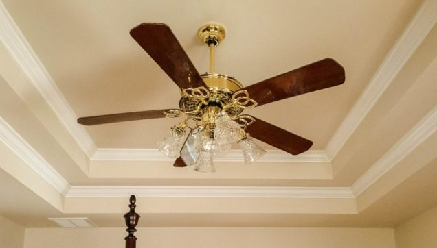 Ceiling fan and light fixture
